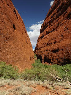 Article Uluru pic